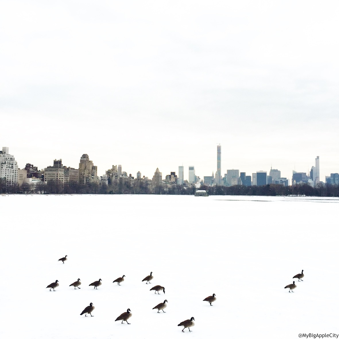 MyBigAppleCity-new-york-blog-travel-centralpark