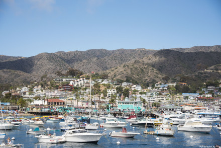 Catalina-Island-Travel-Blogger-USA-MyBigAppleCity
