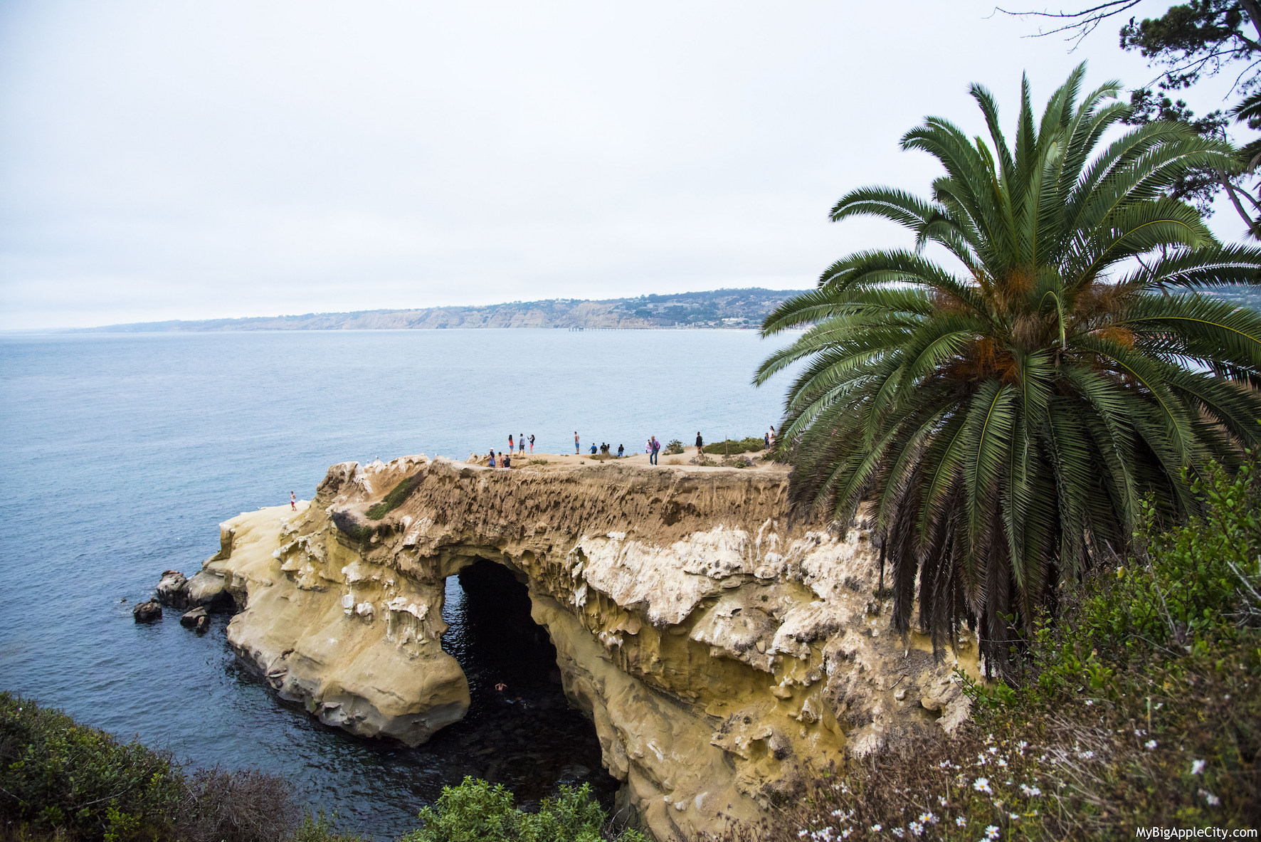 La-Jolla-San-Diego-Travel-Blogger-USA-MyBigAppleCity