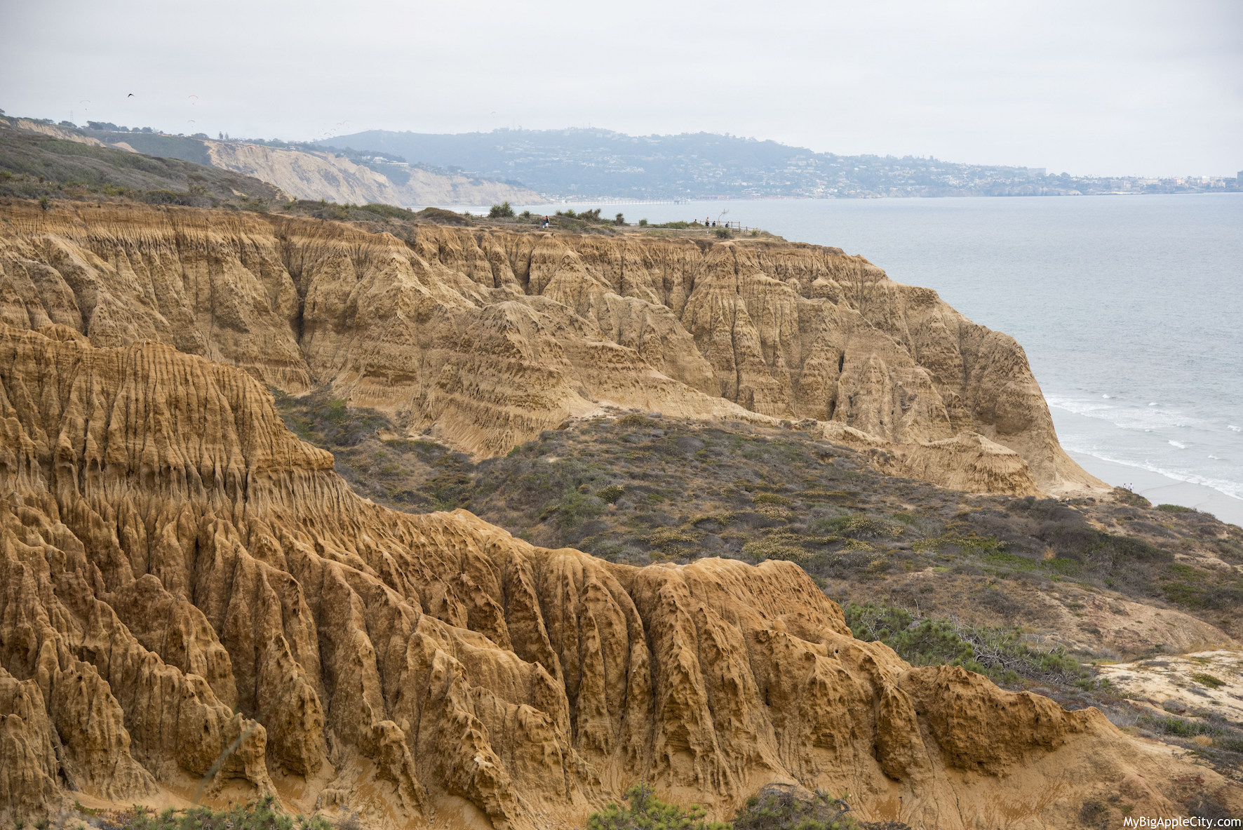 Torrey-Pines-Hiking-San-Diego-Travel-Blogger-USA-MyBigAppleCity