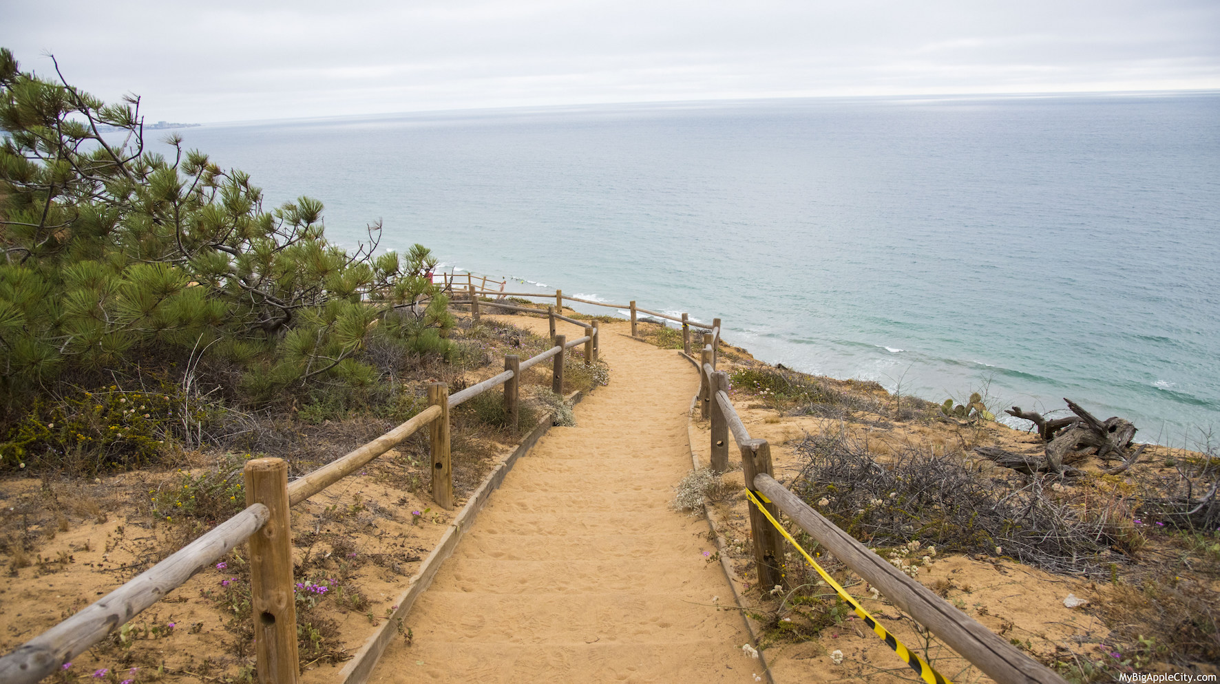 Torrey-pines-hike-San-Diego-Travel-Blogger-USA-MyBigAppleCity