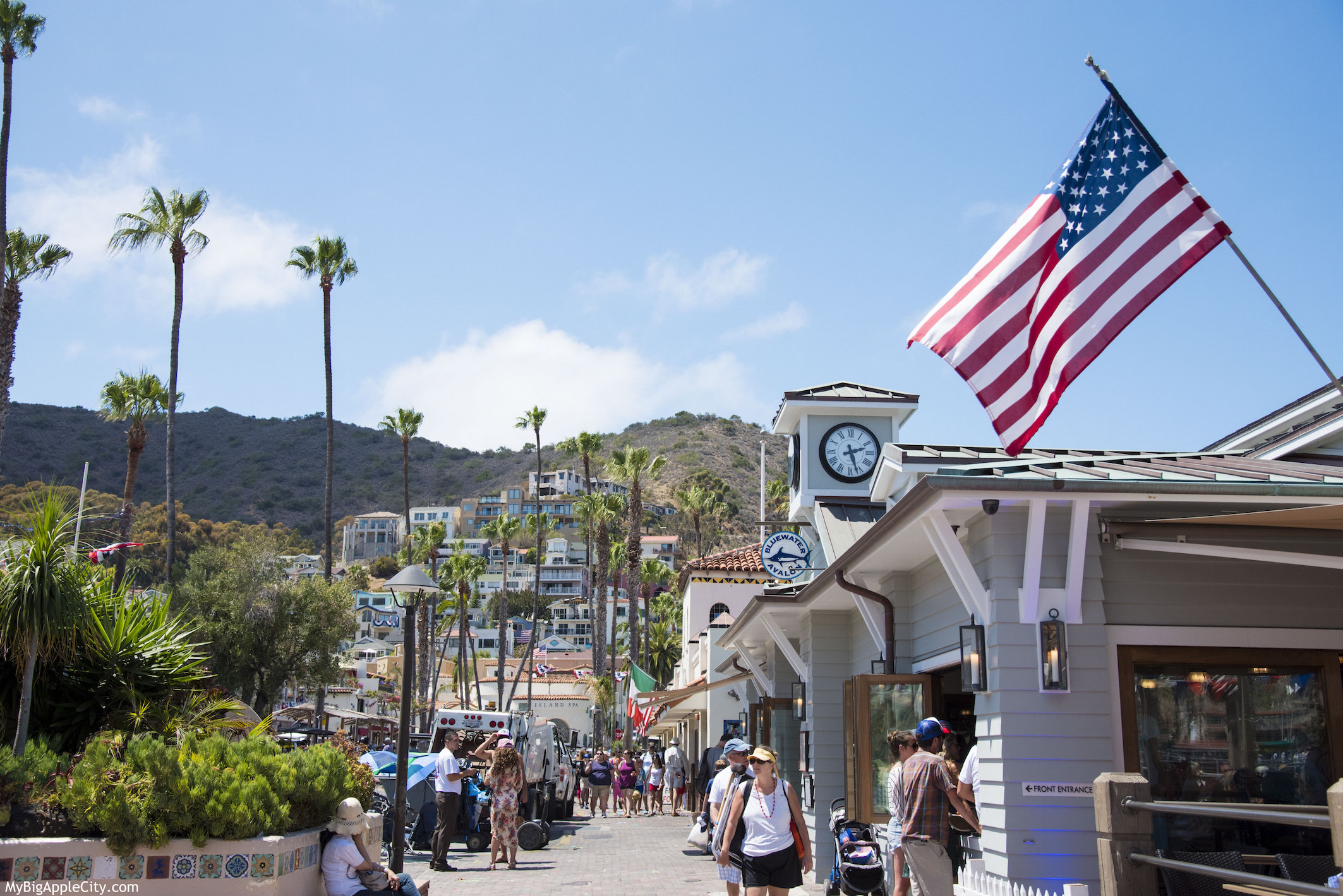 Voyage-californie-road-trip-catalina-island-blog-mybigapplecity