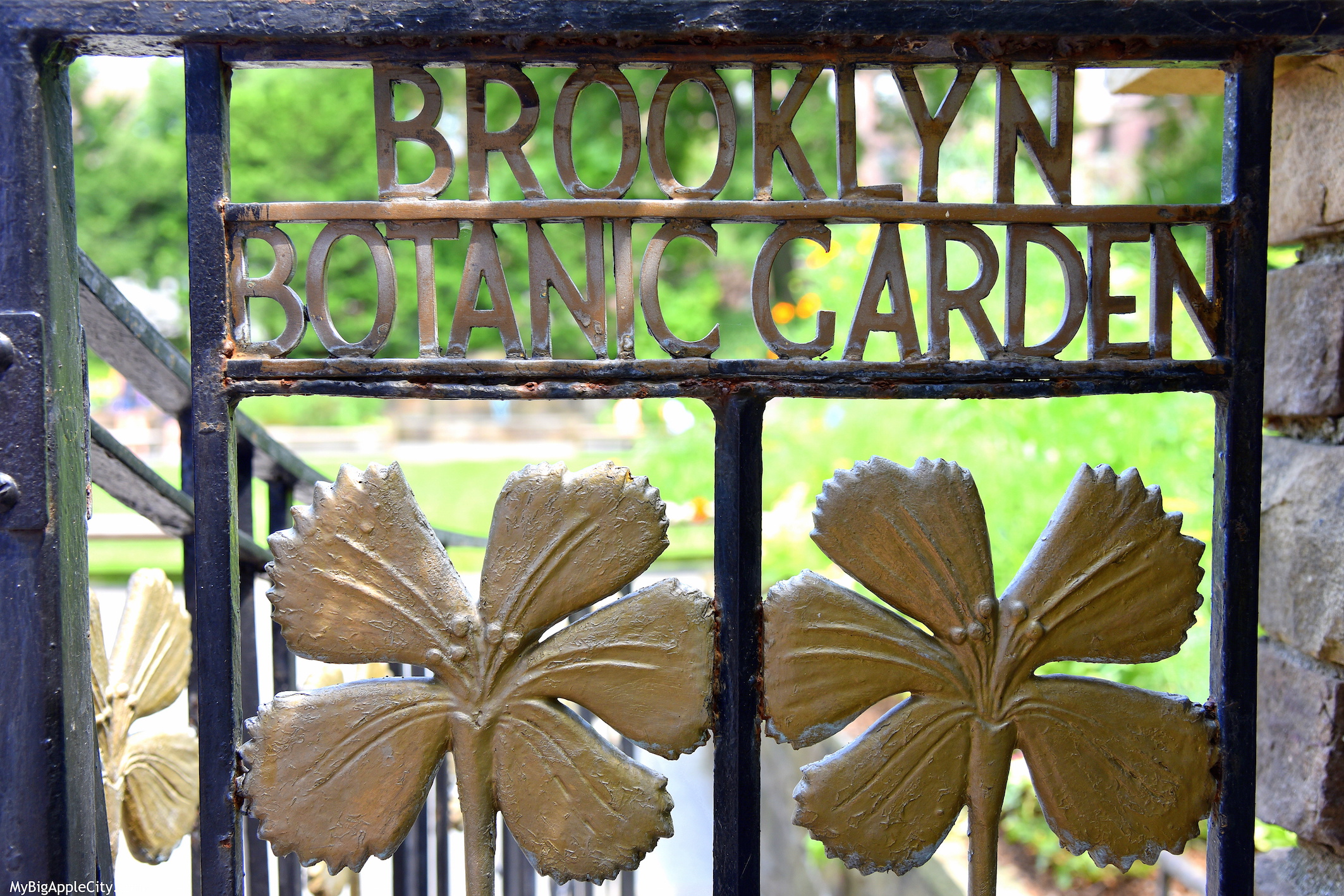 Free-Brooklyn-Botanical-Garden-New-York-Travel-MyBigAppleCity