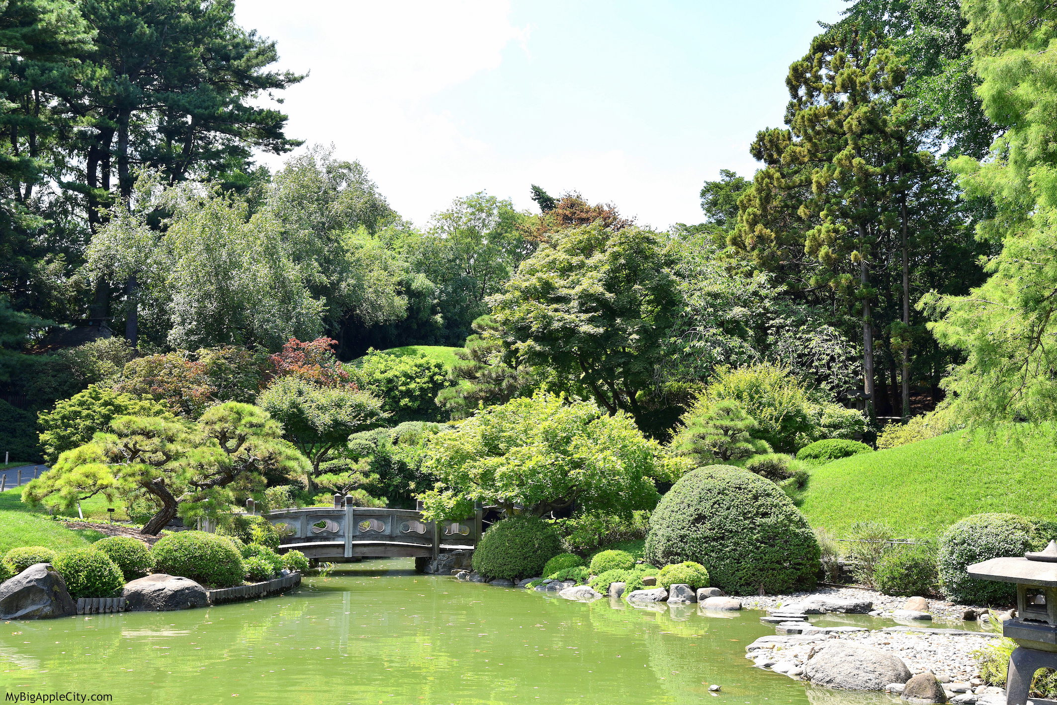 Japanese-Garden-Brooklyn-Botanical-Garden-New-York-Travelblogger-MyBigAppleCity