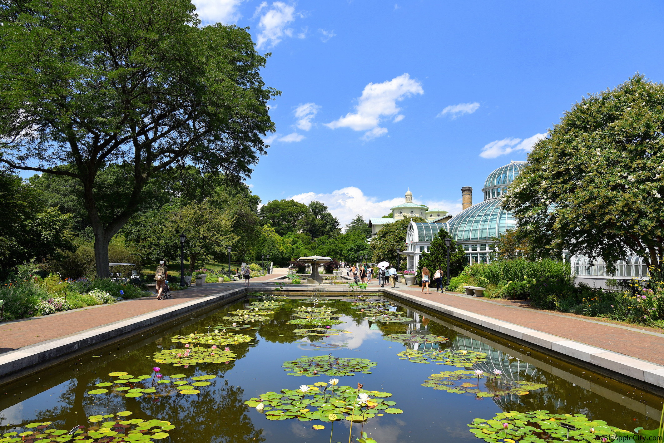 Visit-Brooklyn-Botanical-Garden-New-York-Travel-MyBigAppleCity