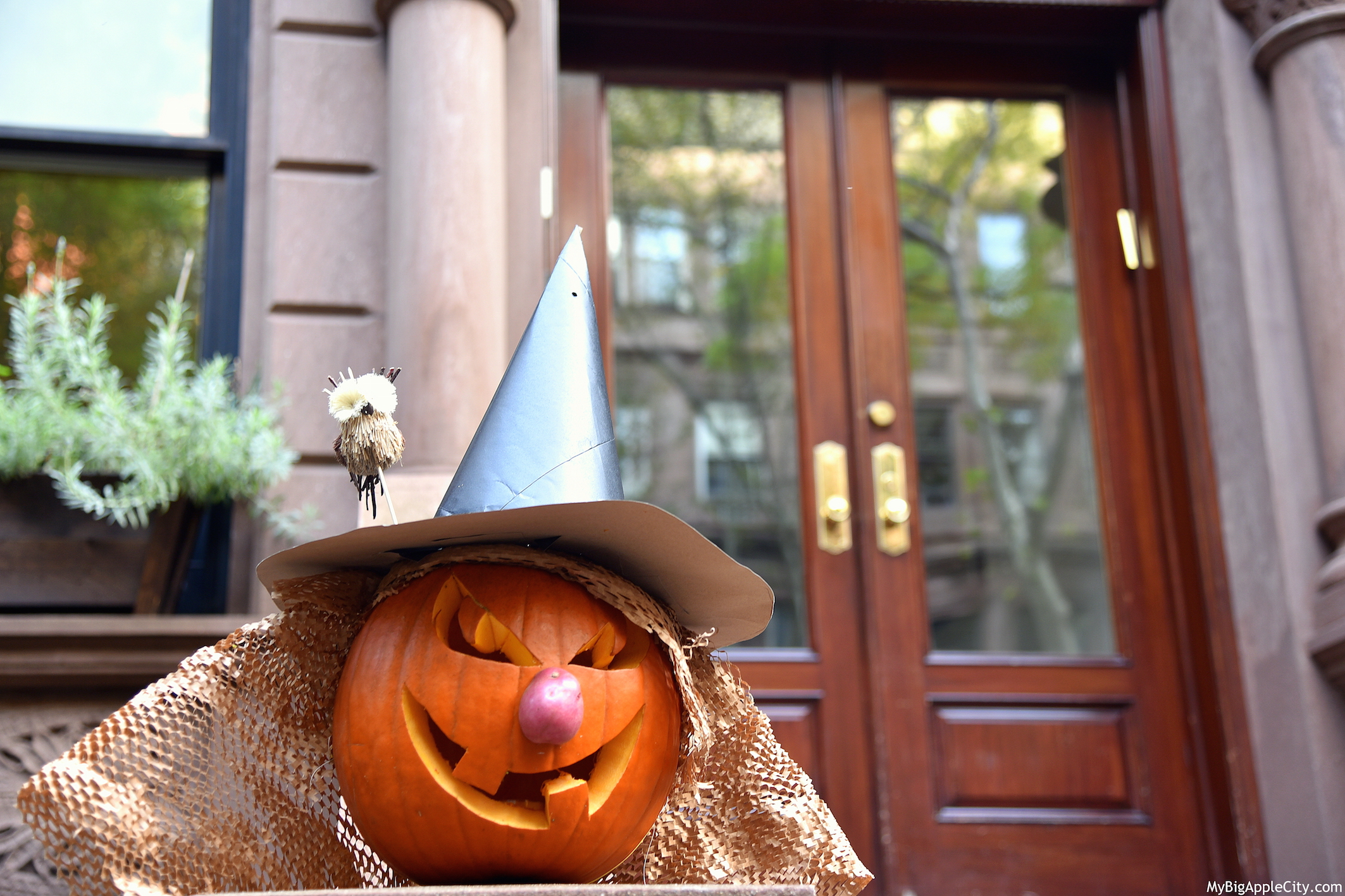 Pumpkin-Halloween-NYC-2015-Lifestyle-blog-newyork