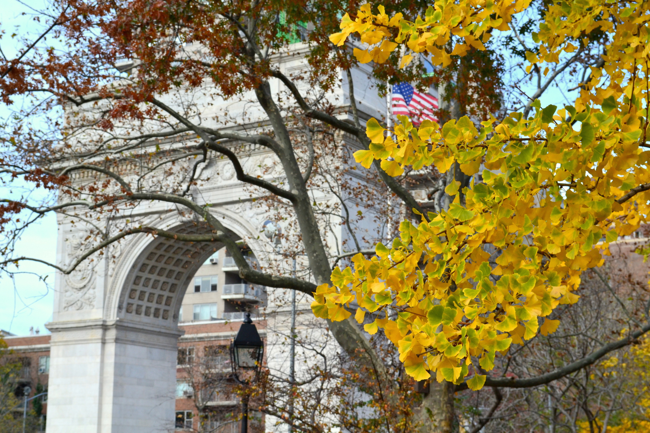 Washington Square Park NYC Fall Foliage Blog voyage