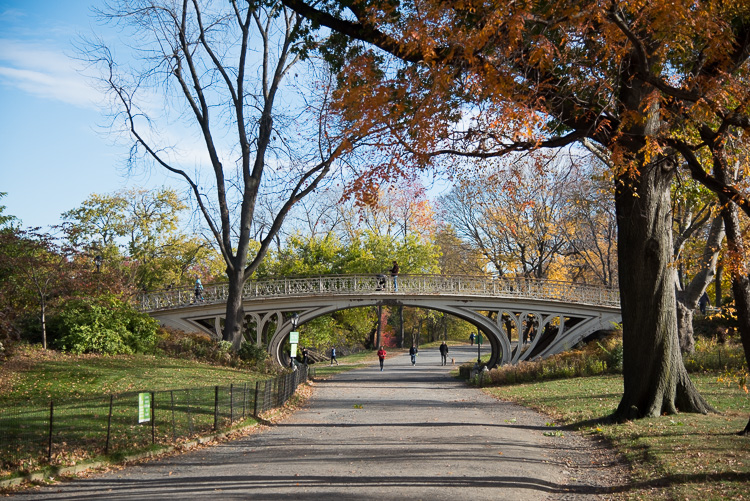 central-park-new-york-2016-blog-voyage-nyc-13