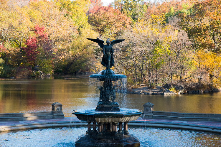 central-park-new-york-2016-blog-voyage-nyc-5