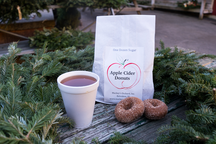 Apple Cider Donuts, road trip NY NJ