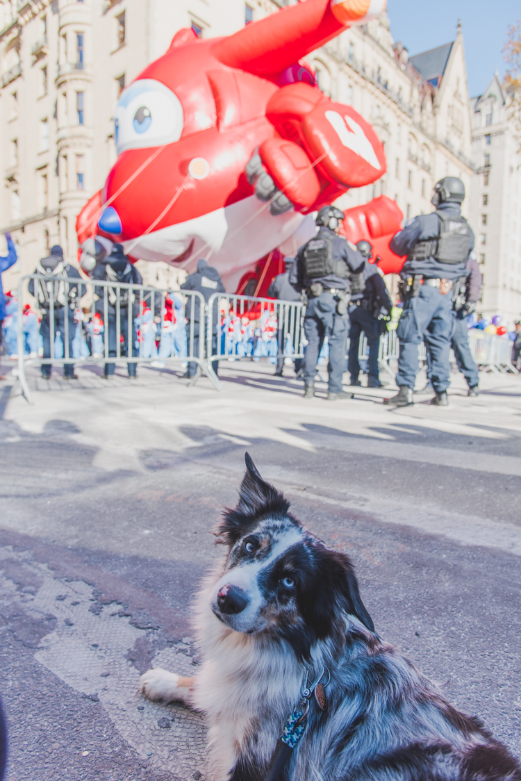 Happy Thanksgiving parade 2018 New York City