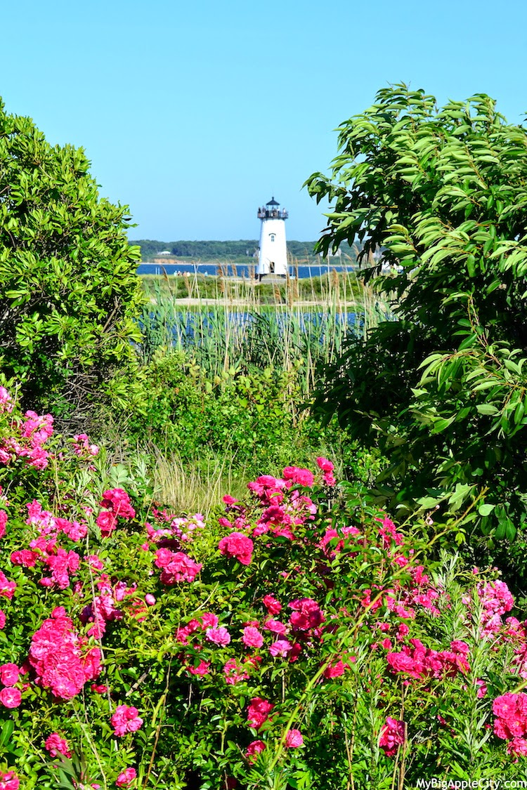 Martha's-Vineyard-lighthouse-discover-usa-travel-blog