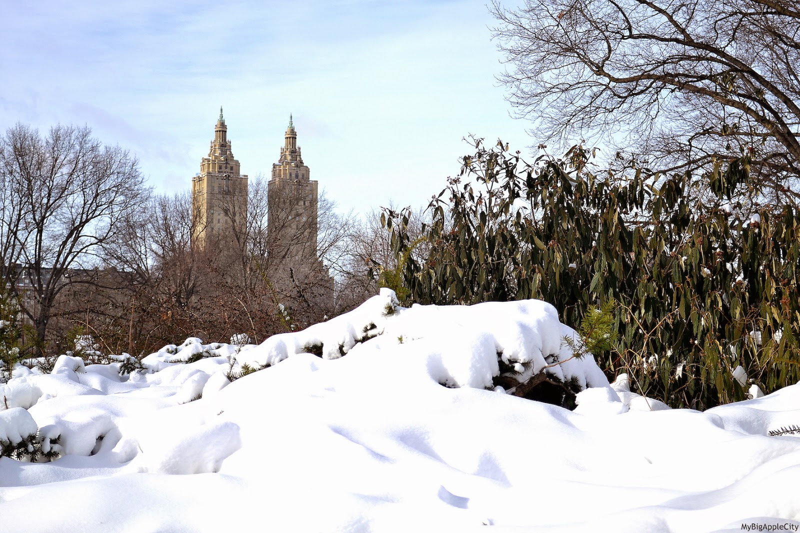 juno-2015-NYC-Blizzard-central-park-winter