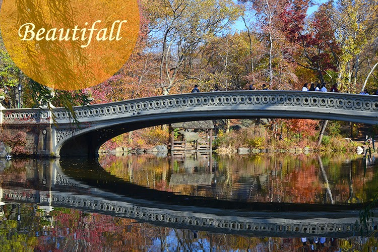 mybigapplecity-fall-autumn-central-park-nyc-travel