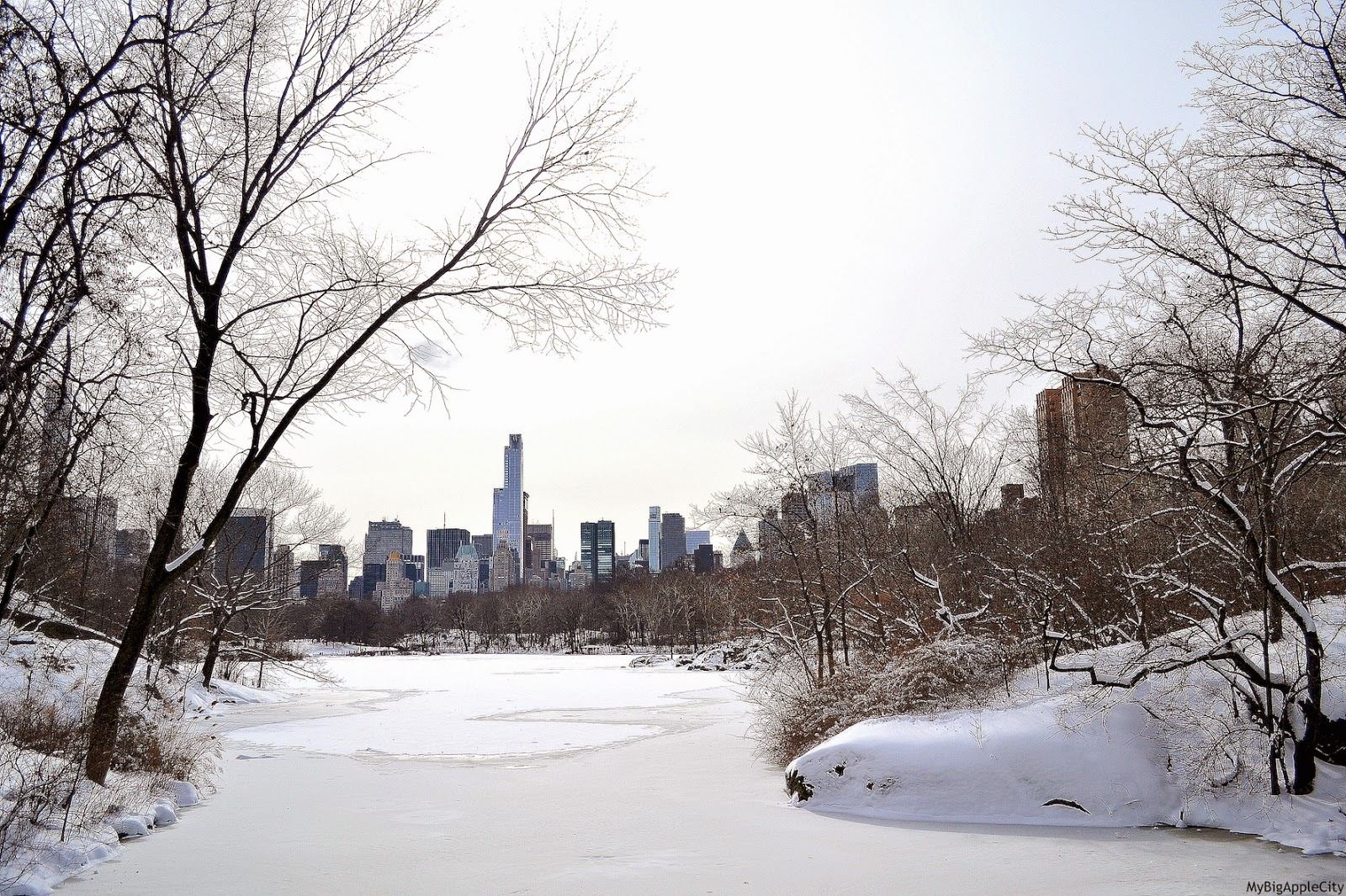 juno-2015-NYC-Blizzard-photo-central-park