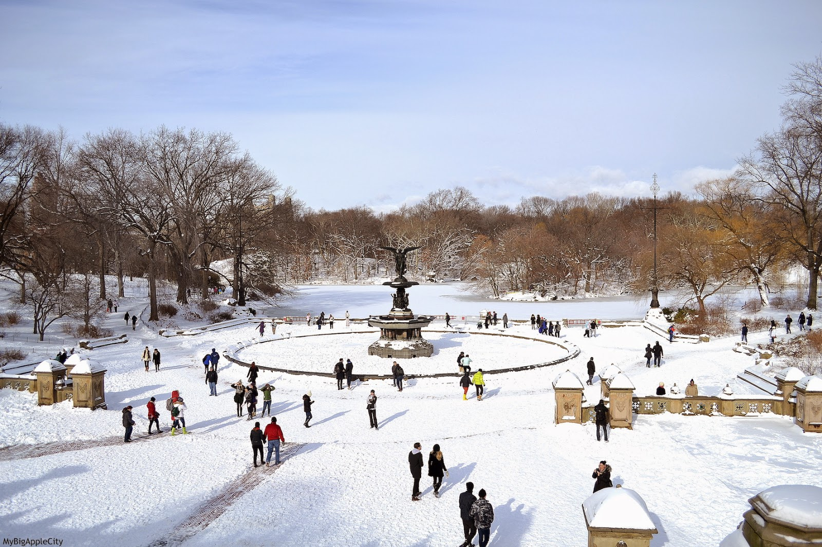 juno-2015-NYC-Blizzard-CentralPark-travel-blog