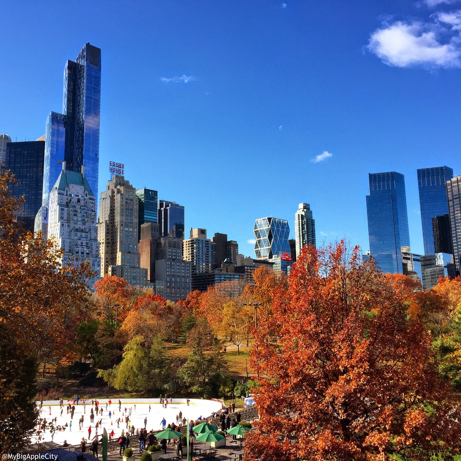 central-park-fall-landscape-travel-blogger